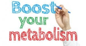What to Eat to Lose Weight and Burn Metabolism